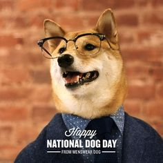 Menswear Dog celebrating National Dog Day in style Menswear Dog, Happy National Dog Day, Dog Presents, Guys Be Like, Working Dogs, Dog Names, Shiba Inu, Best Dogs, Cute Animals