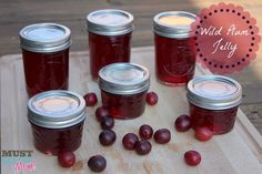 Last night I made two batches of Wild Plum Jelly from wild plums my mom gave me from her tree. It turned out SO good! Wild plum jelly recipe below! Wild Plum Jelly Recipe, Plum Jelly Recipes, Plum Juice, Homemade Jelly, Jam And Jelly, Canning Recipes, Freezer Recipes, Favorite Recipes, Animal Pillows