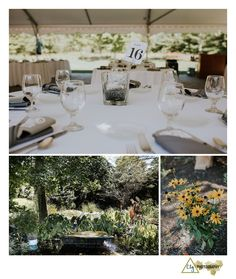 Stone Bridge Farm Nursery Wedding Photos 0025