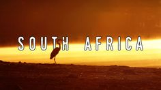 Some of my favourite moments from South Africa last year (through the eyes of a wildlife nerd) [OC] #travel #ttot #nature #photo #vacation #Hotel #adventure #landscape https://www.youtube.com/watch?v=duEgvGDYy1g