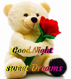Good Night Images For WhatsApp Free Download New Good Night Images, Romantic Good Night Image, Beautiful Good Night Images, Cute Good Night, Good Night Sweet Dreams, Good Night Moon, Good Morning Good Night, Beautiful Lines, Beautiful Flowers