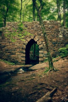 Poinsett Bridge.  The oldest intact bridge (1820) in S.C. once served as an important link in State Road, which connected Charleston with the mountain communities in North Carolina. The bridge is named for Joel R.  Poinsett.  Poinsett gained greater fame for introducing the poinsettia to the United States. The graceful 14-foot Gothic arch stone bridge spans the Little Gap Creek.