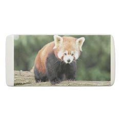 Eraser. Photography Panda. Eraser -  Photo Fabien Reignier. My site http://nature-dans-lobjectif.com              ... #custom #print on demand art themed #gift #penco  eraser design by #naturedanslobjectif - #penco  #eraser #red-panda #animal #cute #panda #photo #aniamux #animals #voyage #love #trip #asie #pandas #bear #nature #chine #ours #animaux #ailuropoda #melanoleuca #ursidae #tibet #china #love-panda #photography #bambou #bamboo #himalaya #ailurus #panda-fuligineux #ailuridae…