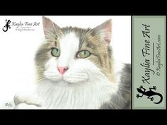 Speed drawing: how to draw a cat pet portrait in coloured pencil: Azzie - 8:07 YouTube
