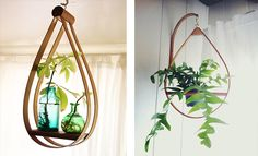 love these plant hangers at justina blakeney