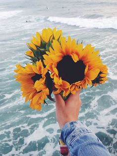 wave after wave shared by є ʟ ı s ɑ ✿ on We Heart It Flower Aesthetic, Aesthetic Photo, Aesthetic Pictures, Aesthetic Yellow, Aesthetic Backgrounds, Aesthetic Iphone Wallpaper, Aesthetic Wallpapers, Summer Photography, Nature Photography