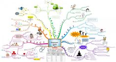 English Grammar Verbs Infographic
