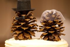 The World's Top 10 Best Things to do With Pine Cones