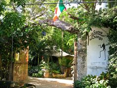 La Cueva del Chango. My favorite restaurant in the world. Located in Playa del Carmen