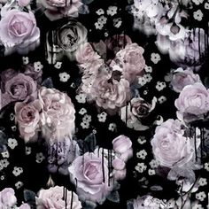 Inky Roses by Studio Lebra Seamless Repeat Royalty-Free Stock Pattern Selfies, Flower Wall, Aud, Repeat, Free Pattern, Floral Design, Royalty, Roses, Trends