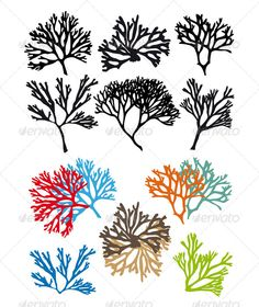 Corals Reefs Vector Set — Vector EPS #marine #texture • Available here → https://graphicriver.net/item/corals-reefs-vector-set/4926330?ref=pxcr