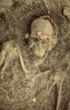 Swifterbantmensen bewoonden zesduizend jaar geleden het gebied dat nu Flevoland heet. Fotocollectie Nieuw Land.