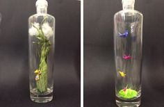 Often an item that seems utility can be the perfect canvas for creativity! Look at what a Milwaukee store employee did with our 750ml Glass Bottles, and get inspired for some surplus arts and crafts of your own!