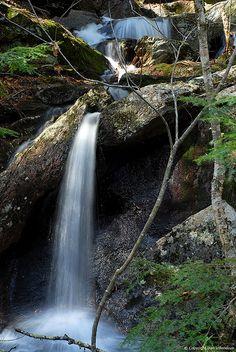 """""""Waterfall Cascade"""" Pulpit Rock, Bedford, NH. Photographer: Dan Villeneuve"""