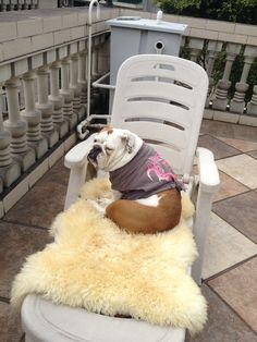 Sunbathing Beauty!