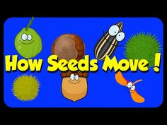 Seed Song - How Seeds Move - Seed Dispersal Science Videos, Science Lessons, Life Science, Science Labs, Forensic Science, Physical Science, Earth Science, Kindergarten Science, Elementary Science