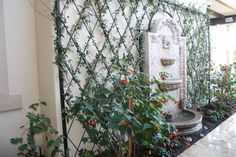Garden Trellis and Lattice Ideas (Wood & Metal) A diamond-patterned lattice surrounds a wall fountain.A diamond-patterned lattice surrounds a wall fountain. Iron Trellis, Wall Trellis, Metal Trellis, Garden Trellis, Lattice Garden, Metal Lattice, Lattice Wall, Outdoor Wall Fountains, Outdoor Walls