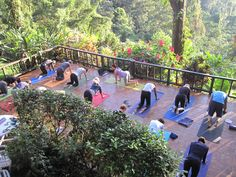 A Costa Rican Jungle Gem with spectacular views, gourmet vegetarian food, daily yoga classes, spa treatments and more. #retreat #yoga