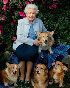 Queen Elizabeth Covers 'Vanity Fair' with Her Beloved Dogs!: Photo Queen Elizabeth II poses for the cover of Vanity Fair's latest issue, surrounded by her beloved Corgis and Dorgis! The royal was photographed by… Annie Leibovitz, Vanity Fair, Prinz Philip, Queen 90th Birthday, Happy Birthday, Die Queen, Isabel Ii, Her Majesty The Queen, Queen Of England