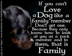 If you can't love a dog like a family member don't get one..