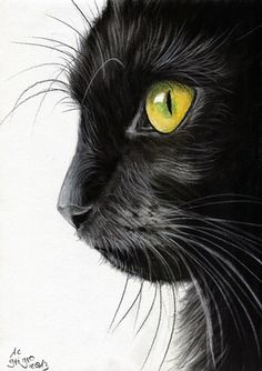 """Black Cat Profile"" - Angela-Carmen Griehl-Groß {feline art painting} art-it-art.deviantart.com"