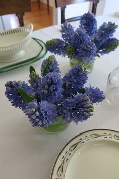 Blue hyacinths arranged in Regency wine rinsers decorate our dining table and echo the pattern on early Wedgwood creamware plates