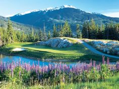 Golf course Fairmont Chateau Whistler, Whistler, Canada