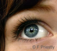 How Do You Draw Realistic Eyes?: Observe the Eye in Detail