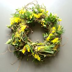 Living wreath for spring or Easter. With mini daffodil bulbs that will flower on the wreath . There is furthermore mimosa, berried Ivy, Eucalyptus and moss. The wreath will last weeks depending on temperature and conditions Small Medium Large Daffodil Bulbs, Bulb Flowers, Daffodils, Funeral Floral Arrangements, Flower Arrangements, Spring Wildflowers, Spring Flowers, Green Funeral, Moss Wreath