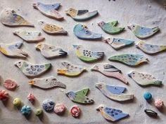 Erin's birds