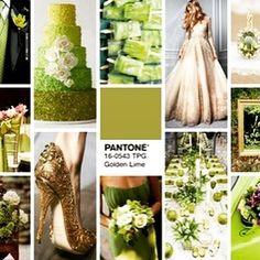Golden Lime Wedding Inspiration board by @robson_liz