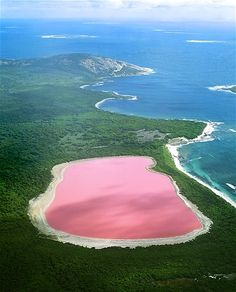 Lake Hillier in Western  Australia   PINK water  (© Jean Paul Ferrero/Ardea/Caters News)
