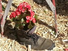 Great use of old boot. Old Boots, Container Gardening, Combat Boots, Slippers, Gardens, Shoes, Fashion, Ankle Shoes, Moda