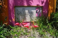 Resort. $108 per night. Pink Flamingo Resort in Port Douglas, Australia - Lonely Planet