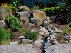 Dreamscape landscaping!