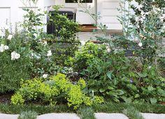 How To Grow An Easy Edible Garden