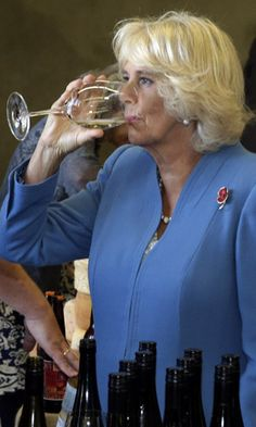 Thirty saucy facts about Charles and Camilla   The New Daily