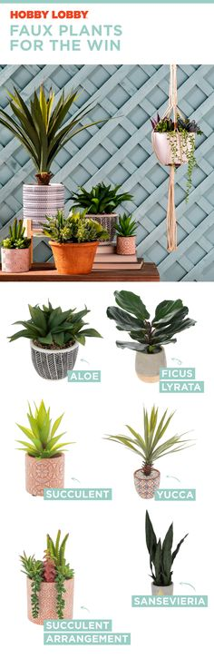 Faux plants are all the style without the hassle. Welcome Summer, Weekly Ads, Faux Plants, Lobbies, Summer Trends, Cacti, Floral Wedding, Succulents, Decorating