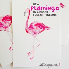 Be a flamingo in a flock full of pigeons.