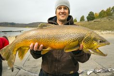 Fisheries biologist Dan Keller holds a 14-pound tiger trout caught during the annual fall gill netting sampling at Scofield Reservoir. Courtesy Utah Division of Wildlife Resources