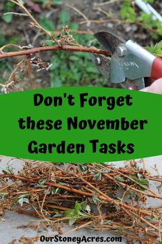7 November Garden Tasks you still need to do! - Our Stoney Acres Learn what garden tasks you need to make sure you get done this Fall. These tasks will help your garden so it is ready for you to plant seeds in it in the spring.