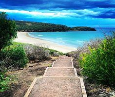 Best #beach #camping between #Sydney and #Melbourne Australia. Check it out now! www.parkmyvan.com.au #ParkMyVan #Australia #Travel #RoadTrip #Backpacking #VanHire #CaravanHire