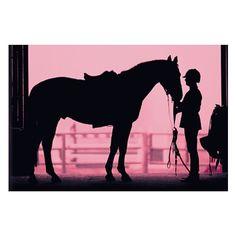 Equestrian Wall Mural | PBteen