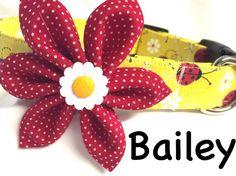 Dog collar lady bug collar daisy collar yellow by DazzleDoggieCo