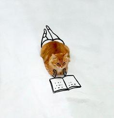 Voici le Doodle Cat, ou quand Internet s'amuse à détourner une simple photo de chat en imaginant des situations amusantesavec quelques traits de crayon ! Vo
