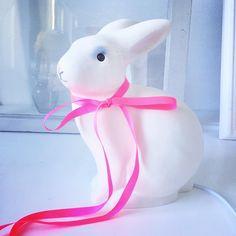 Heico kaninlampa #bunnyinabow