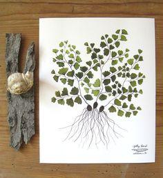 maidenhair fern botanical specimen giclee art print watercolor reproduction.