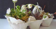 Für eine ganz liebe Freundin ist dieser dekorierte Eierkarton entstanden.                        Ähnlich wie ich euch schon hier gezeigt h...