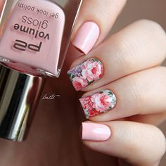 Nail Art Water Decals Transfer Stickers Chic Bloomy Floral Pattern C6-001 : Beauty