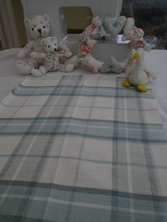 BN Gorgeous Laura Ashley Fabric Remnant In Highland Check